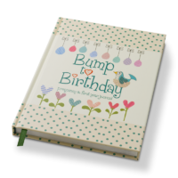 Bump to Birthday pregnancy & first year journal